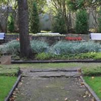 Ancient Gongtats 3 – Park