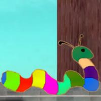 Mystery of Rainbow Worm