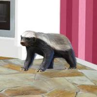 Little Badger Room Escape
