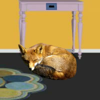Sleeping Fox Room Escape