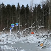 Winter Forest Escape 4