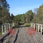 Diamond Bridge RE