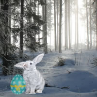 Frozen Easter Forest Escape