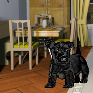 LoL Hidden Objects House Escape