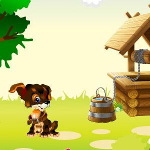 Pets Summer: Jolly Day