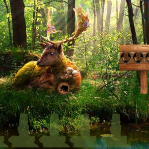 Summer Deer Forest Escape