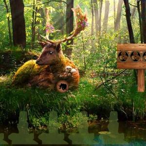 Summer Deer Forest Escape