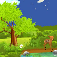 Hidden Escape 3 Night Forest